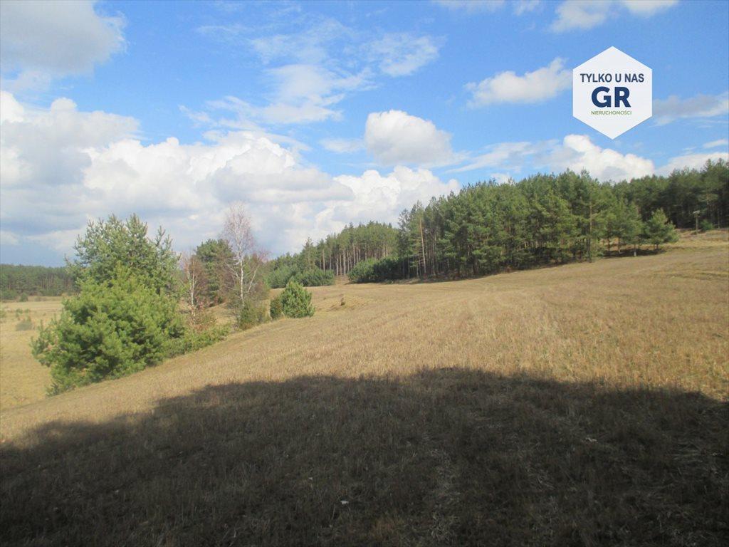 Działka rolna na sprzedaż Gołubie  114900m2 Foto 1