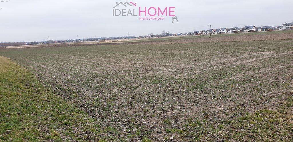 Działka rolna na sprzedaż Rzeszów, Budziwój, Porąbki  4000m2 Foto 7
