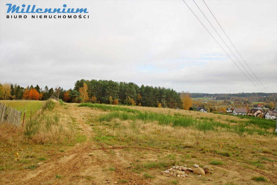 Działka rolna na sprzedaż Nowy Dwór Wejherowski  18766m2 Foto 10