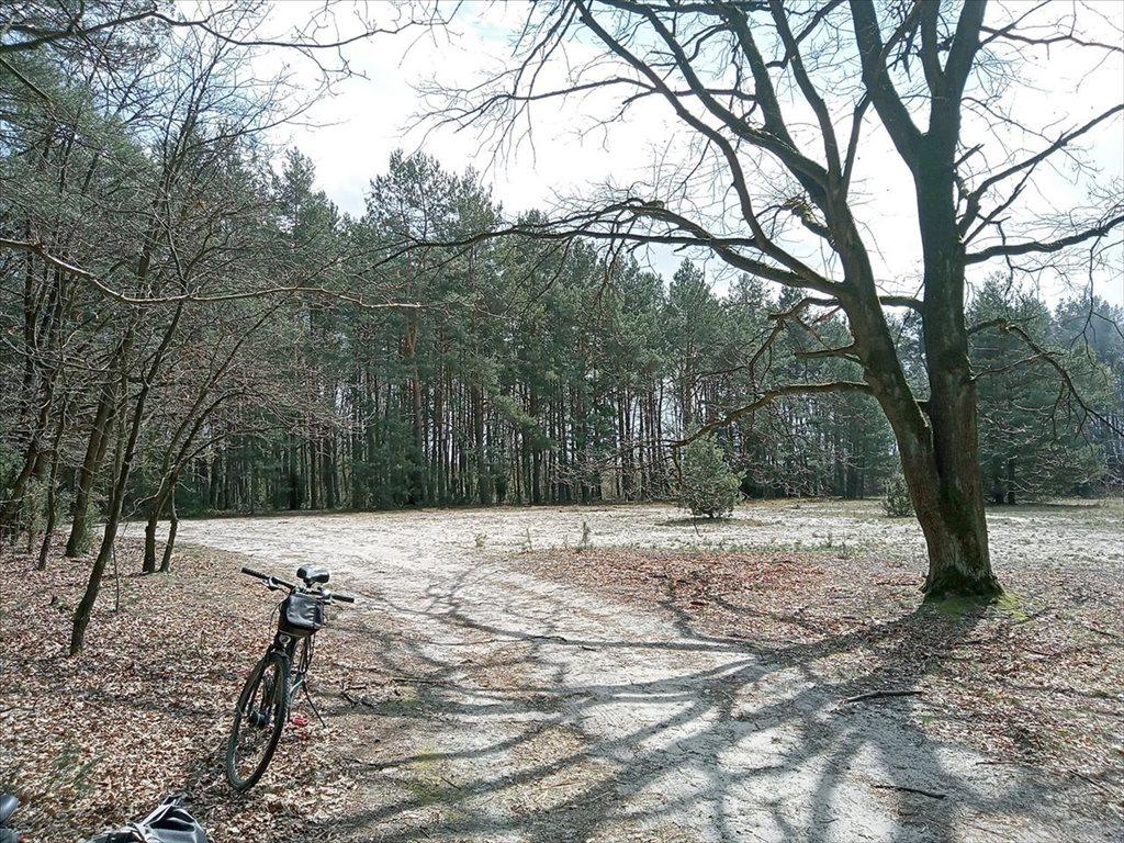 Działka rolna na sprzedaż Wola Karczewska, Wiązowna  6000m2 Foto 4