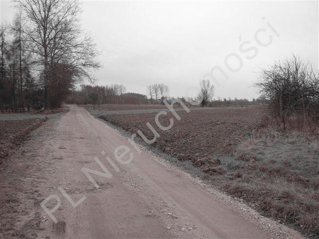 Działka rolna na sprzedaż Jastrzębnik  12730m2 Foto 4