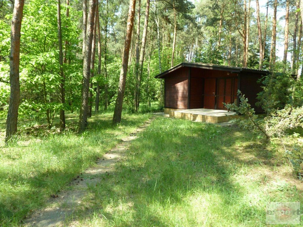 Dom na sprzedaż Bechcice-Kolonia  20m2 Foto 2