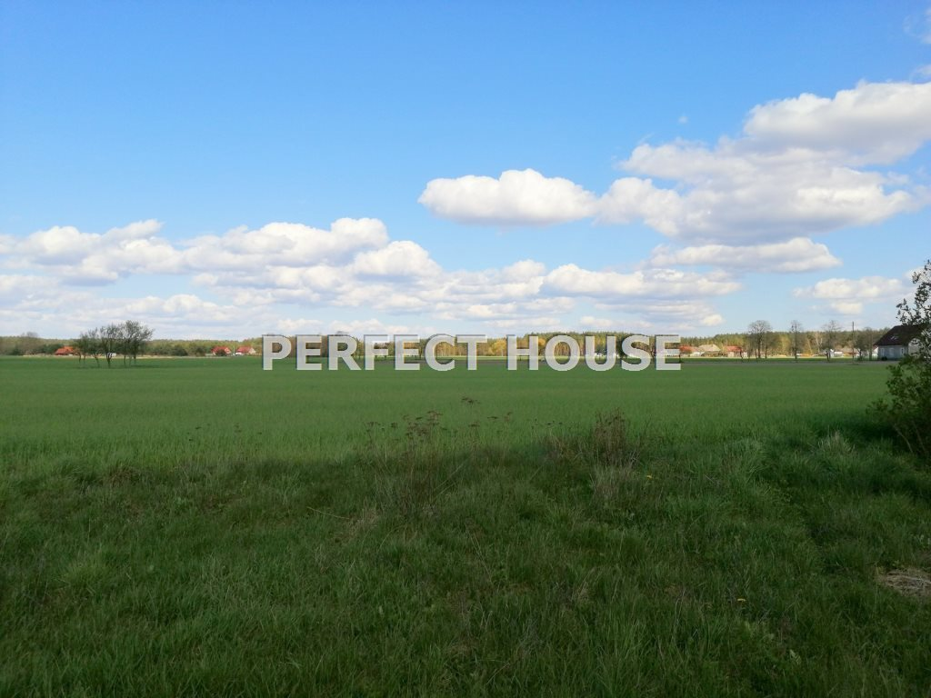 Dom na sprzedaż Drawsko  268m2 Foto 2