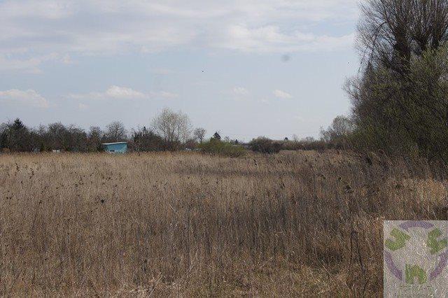 Działka rolna na sprzedaż Gdańsk, Olszynka, Olszyńska  11526m2 Foto 1