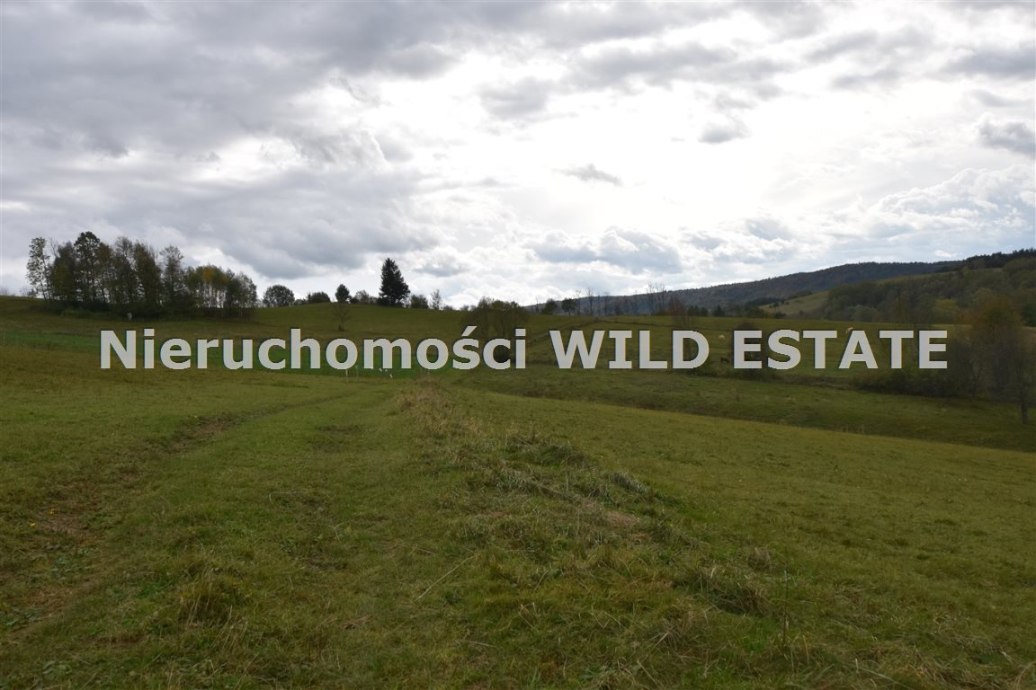 Działka rolna na sprzedaż Solina, Wola Matiaszowa  10329m2 Foto 2