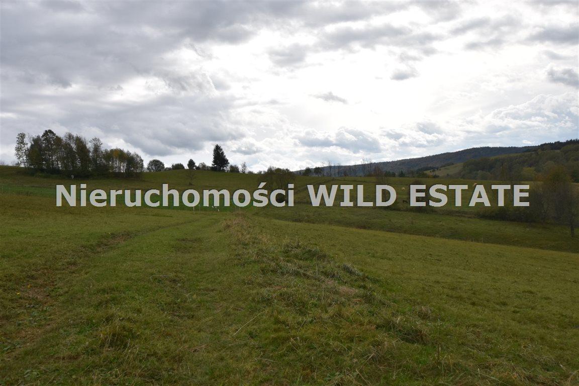 Działka rolna na sprzedaż Wola Matiaszowa  11306m2 Foto 1