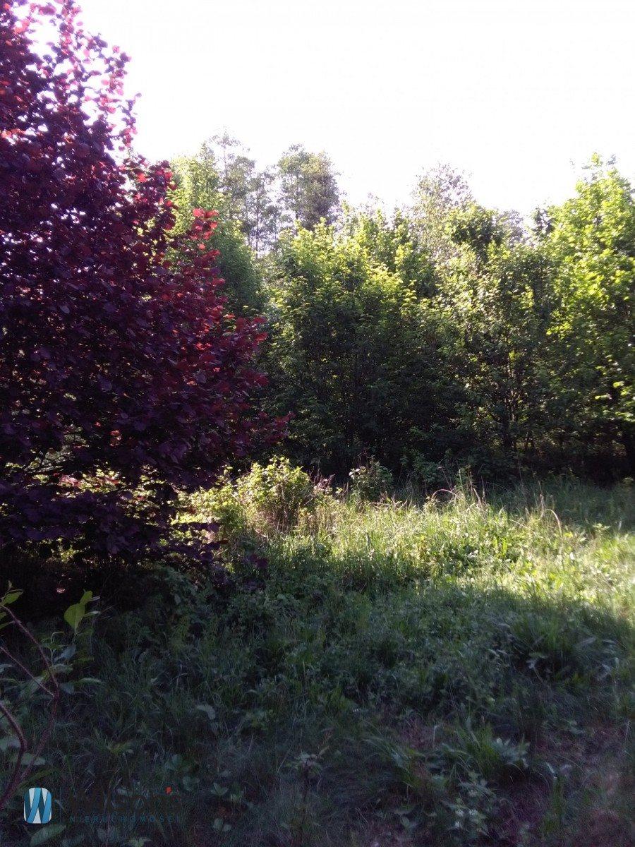 Działka siedliskowa na sprzedaż Molendy  51300m2 Foto 5