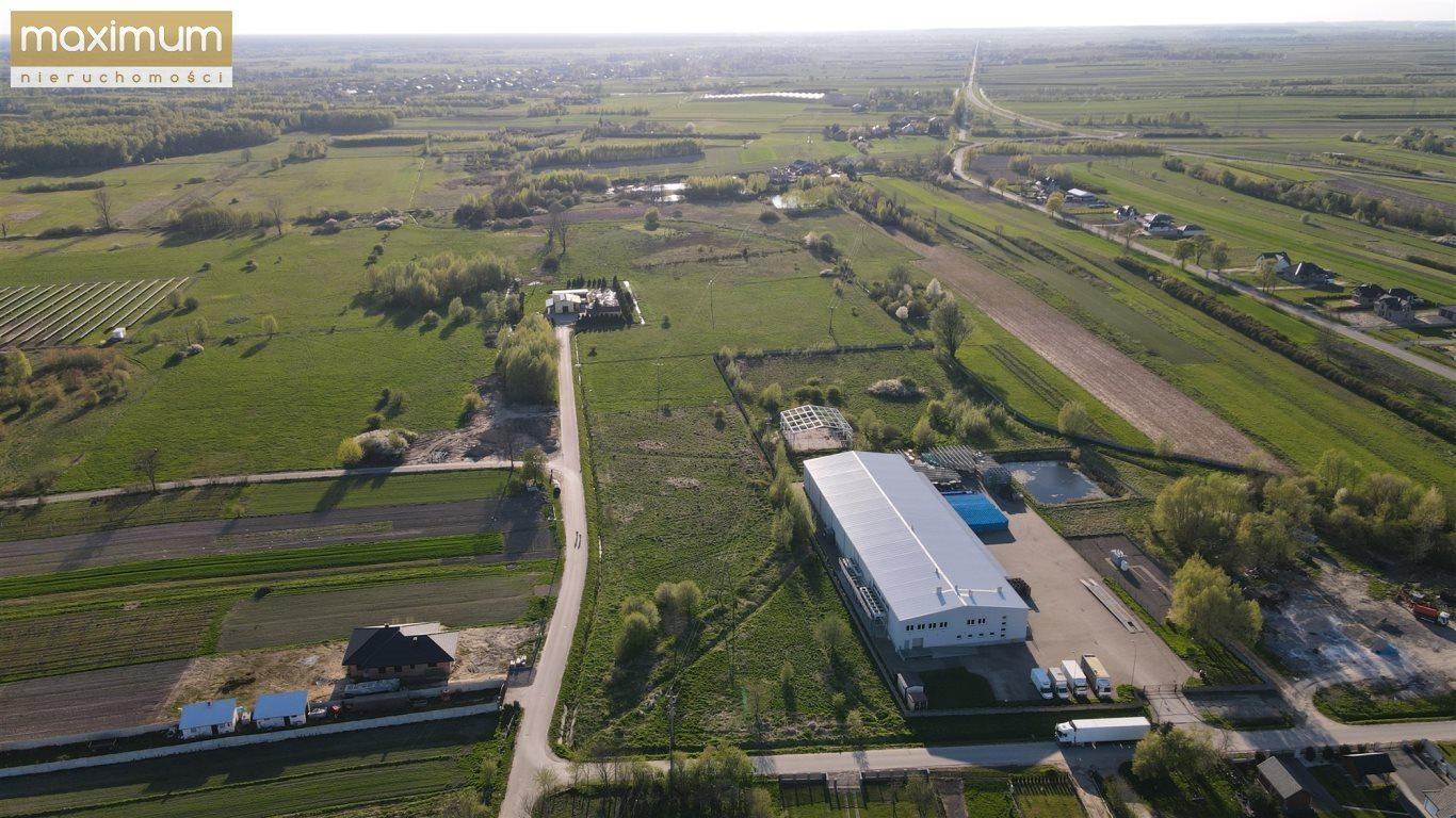 Działka budowlana na sprzedaż Frampol  10000m2 Foto 6