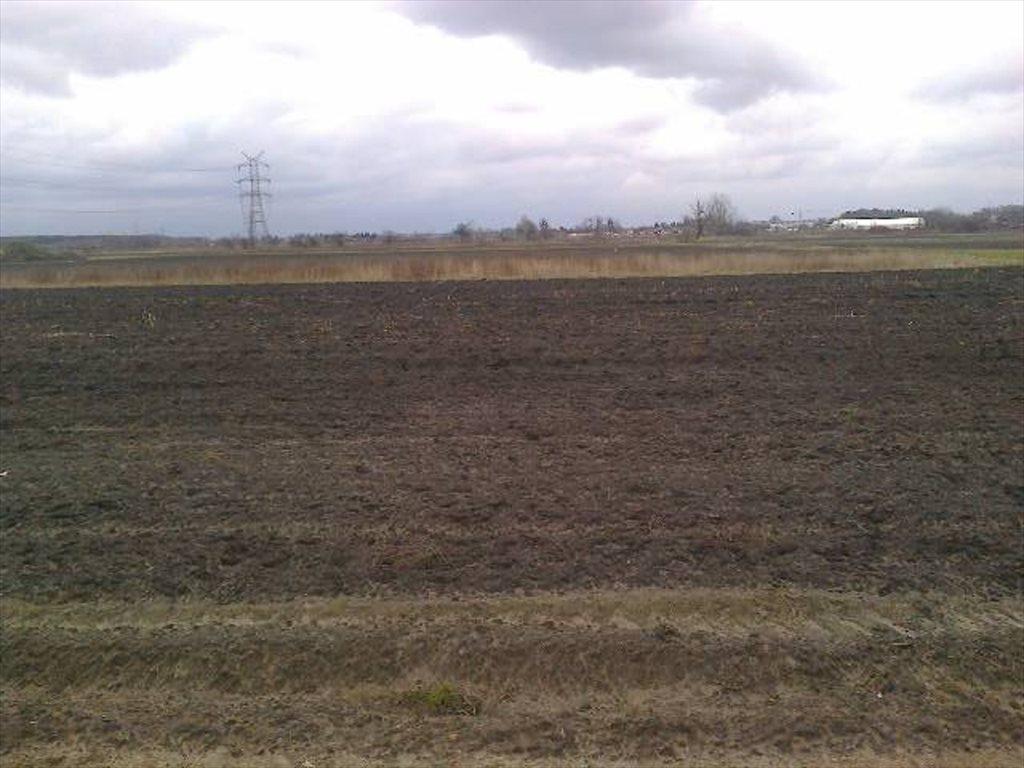 Działka rolna na sprzedaż Koczargi Stare  1459m2 Foto 6