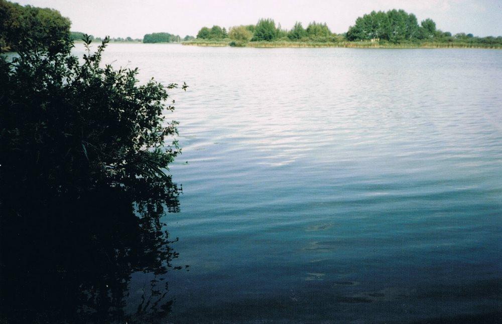 Działka siedliskowa na sprzedaż Myślibórz  125000m2 Foto 4