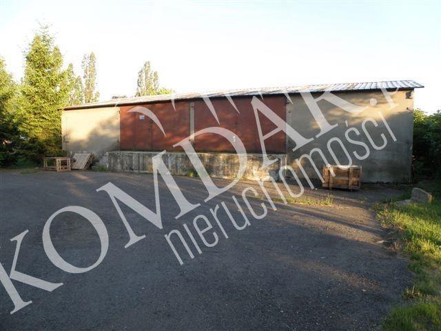 Lokal użytkowy na sprzedaż Szeligi, Szeligi  700m2 Foto 5