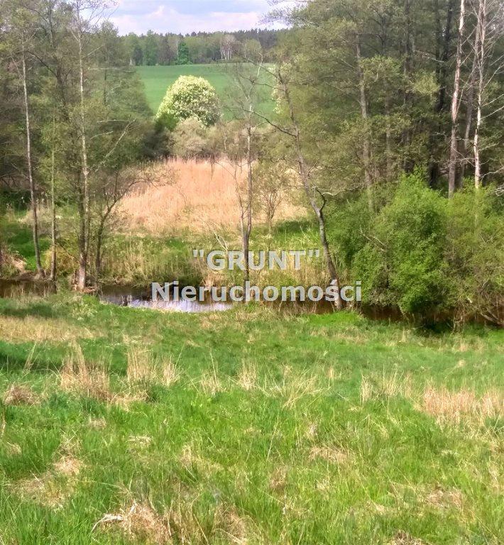 Działka rolna na sprzedaż Dolnik  5650m2 Foto 6