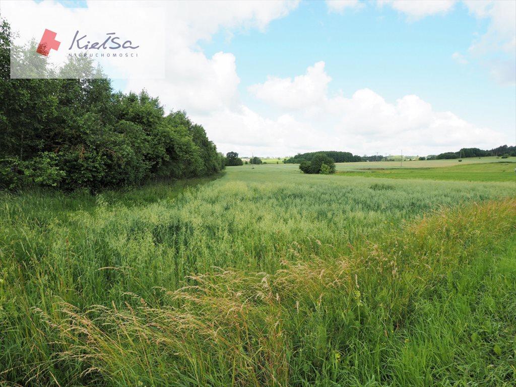 Działka rolna na sprzedaż Dobrzyniewo Kościelne  10378m2 Foto 2