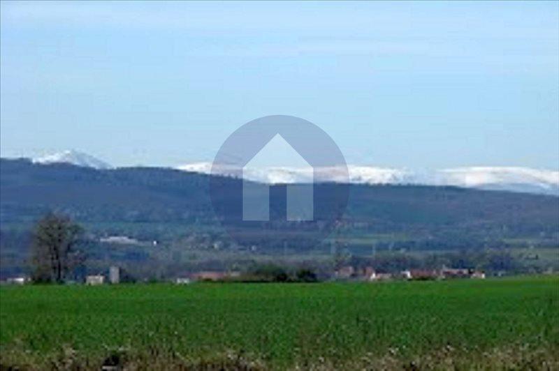 Działka przemysłowo-handlowa na sprzedaż Wilczyce  4000m2 Foto 2