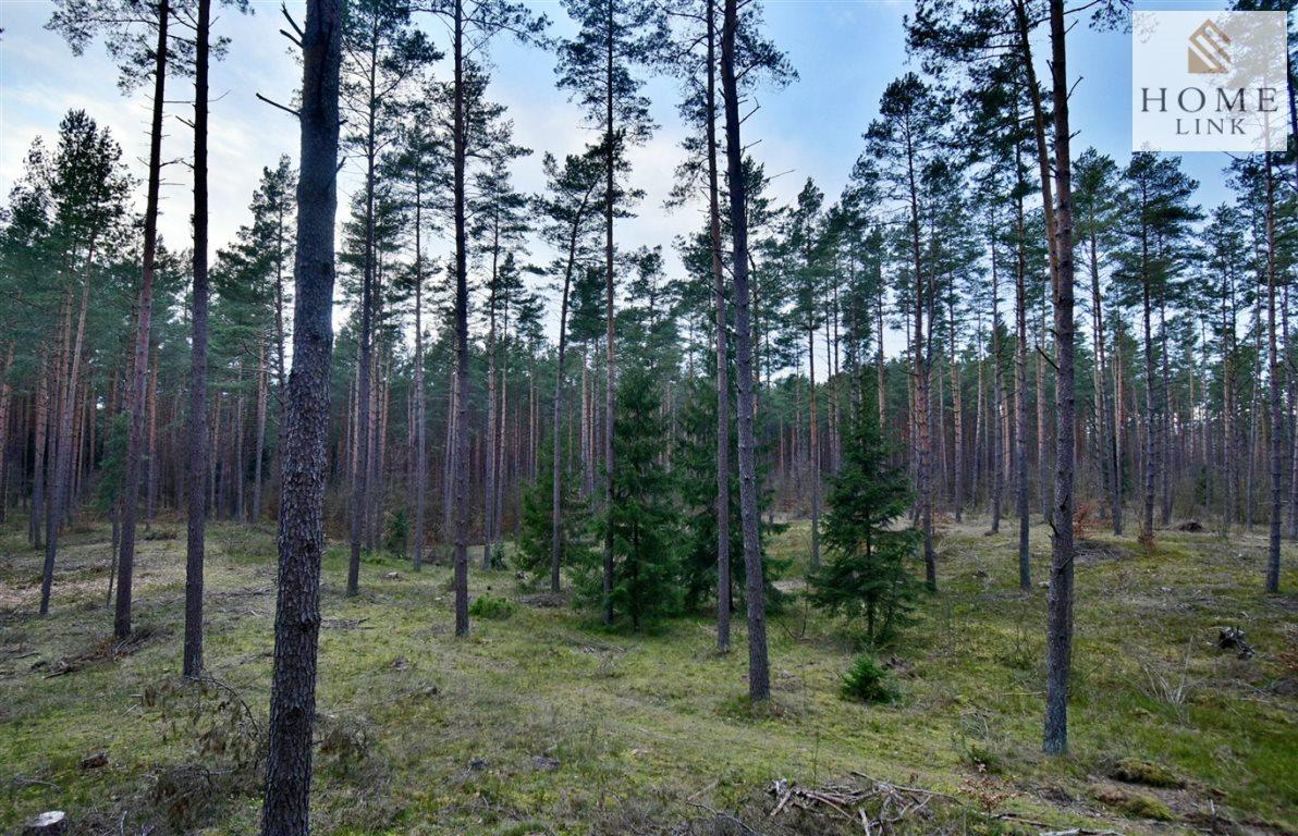 Działka leśna na sprzedaż Warkały  47800m2 Foto 5