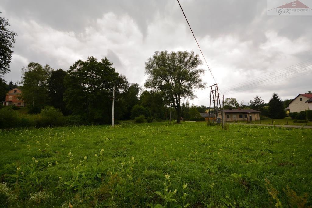 Działka budowlana na sprzedaż Przybówka  4300m2 Foto 1