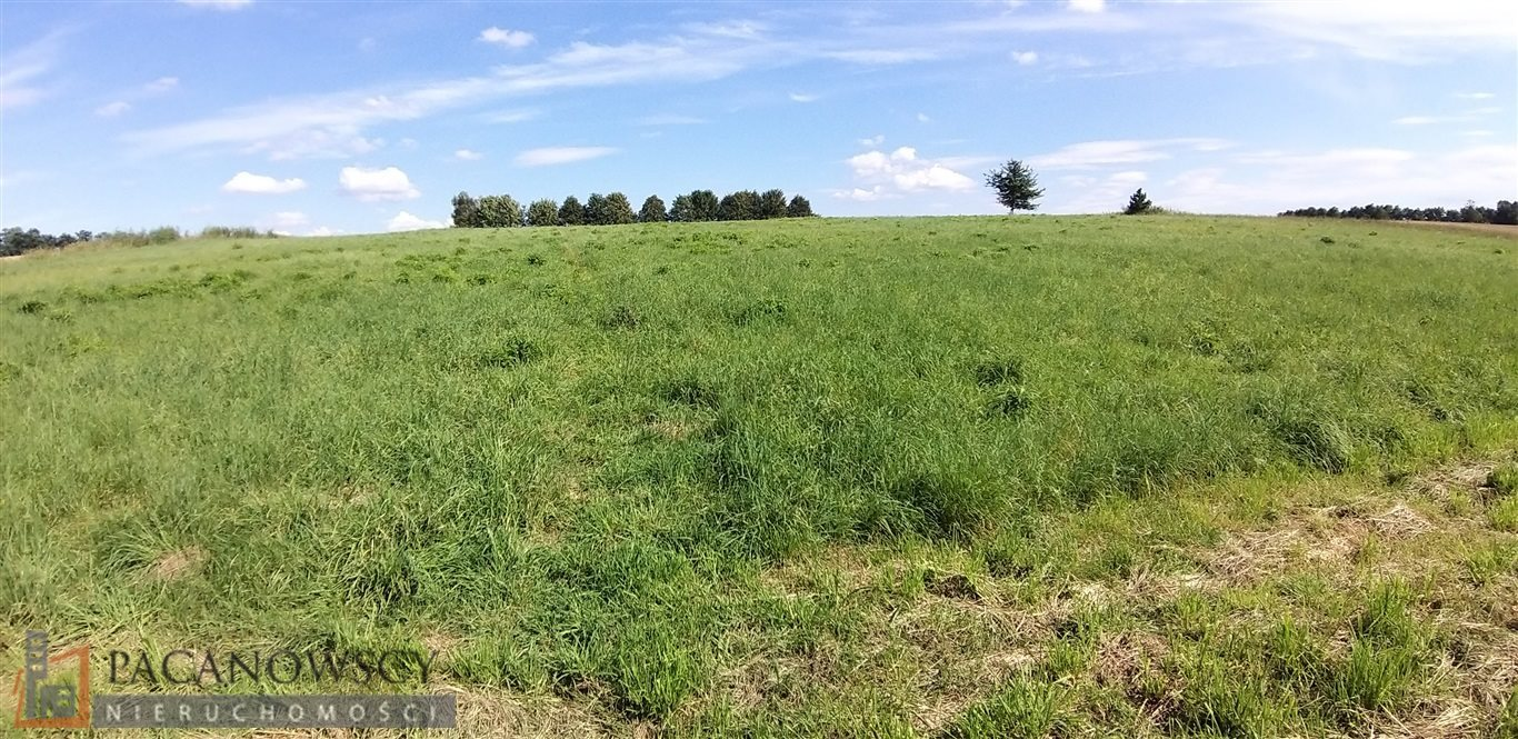 Działka rolna na sprzedaż Bolechowice  3000m2 Foto 5