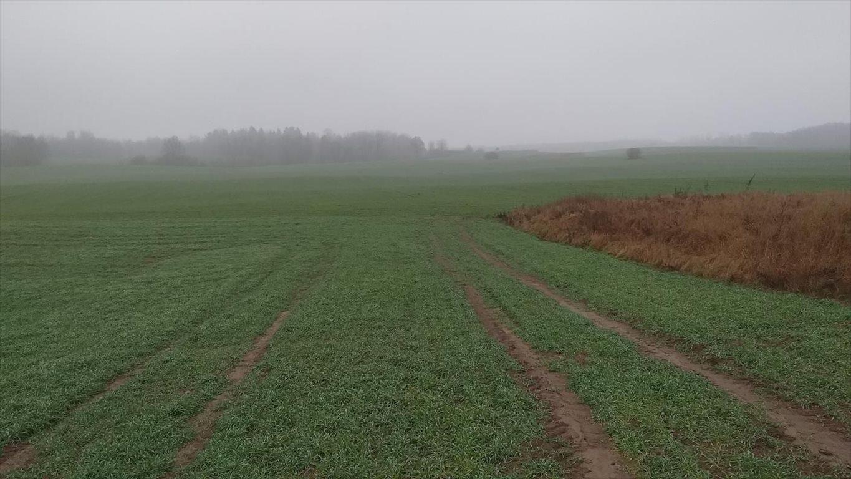 Działka gospodarstwo rolne na sprzedaż Klucznik  7000000m2 Foto 9