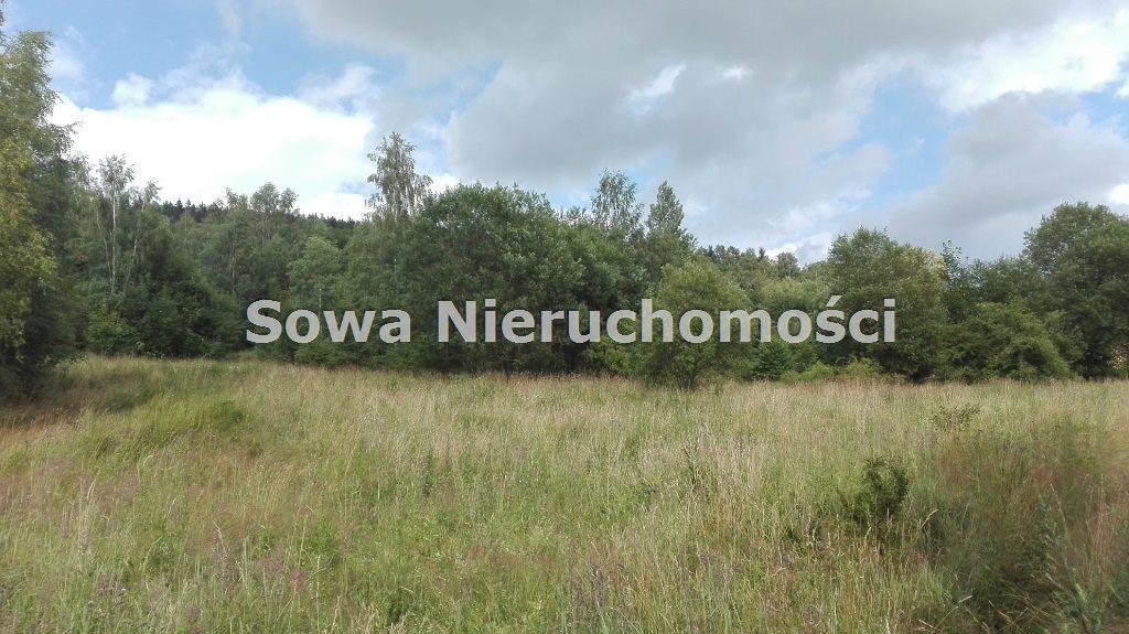 Działka inna na sprzedaż Mieroszów, okolice Mieroszowa  14209m2 Foto 5