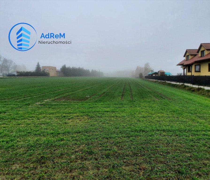Działka rolna na sprzedaż Halickie  9800m2 Foto 1
