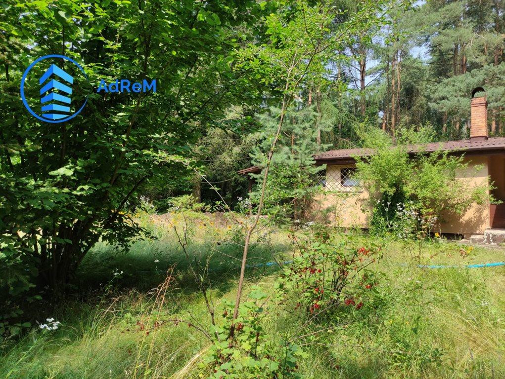 Działka leśna na sprzedaż Korzeniówka, Rysia  2356m2 Foto 1