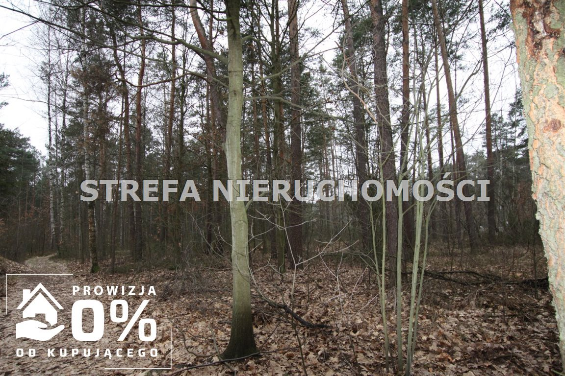 Działka leśna na sprzedaż Smardzewice  3521m2 Foto 1