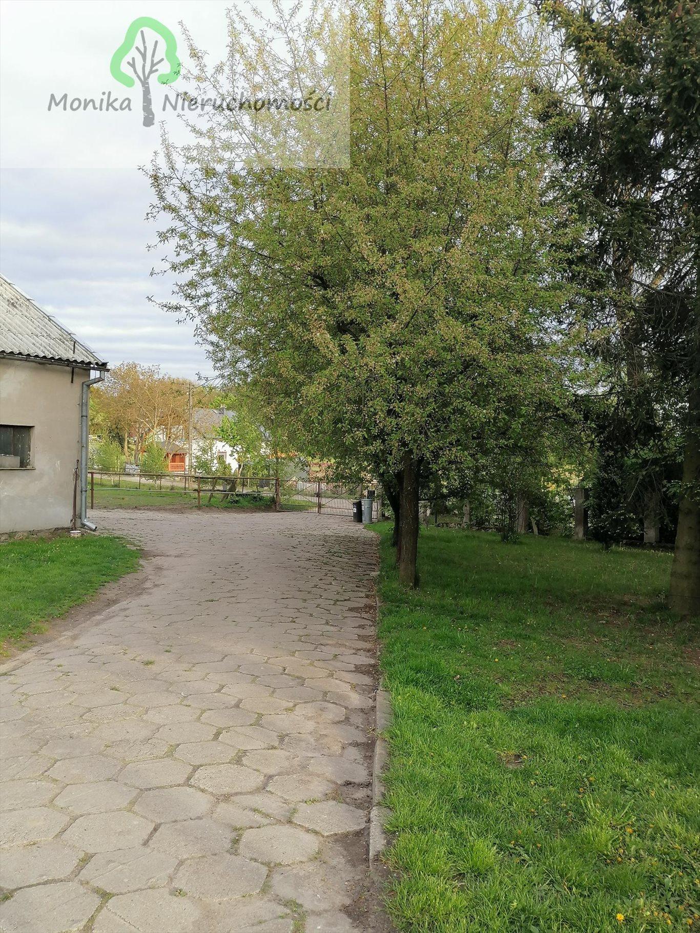 Lokal użytkowy na sprzedaż Szczerbięcin  93200m2 Foto 12
