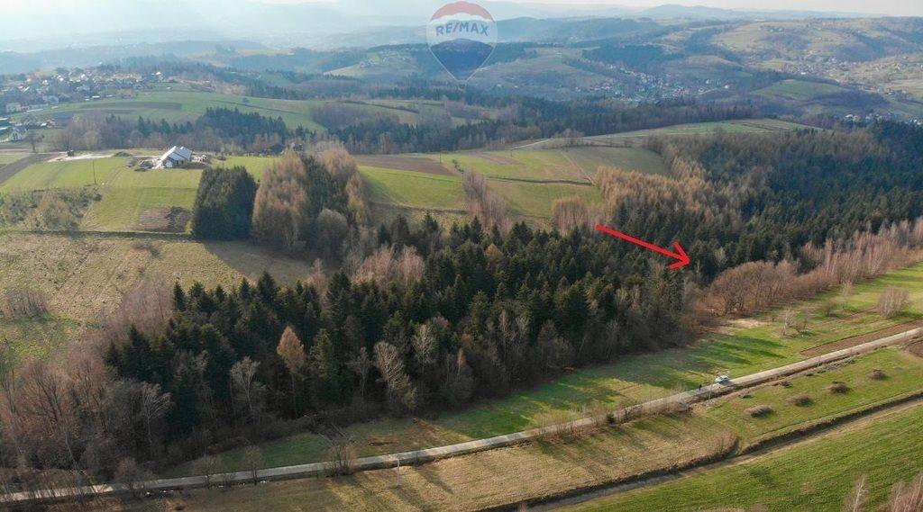 Działka rolna na sprzedaż Mystków  4000m2 Foto 2