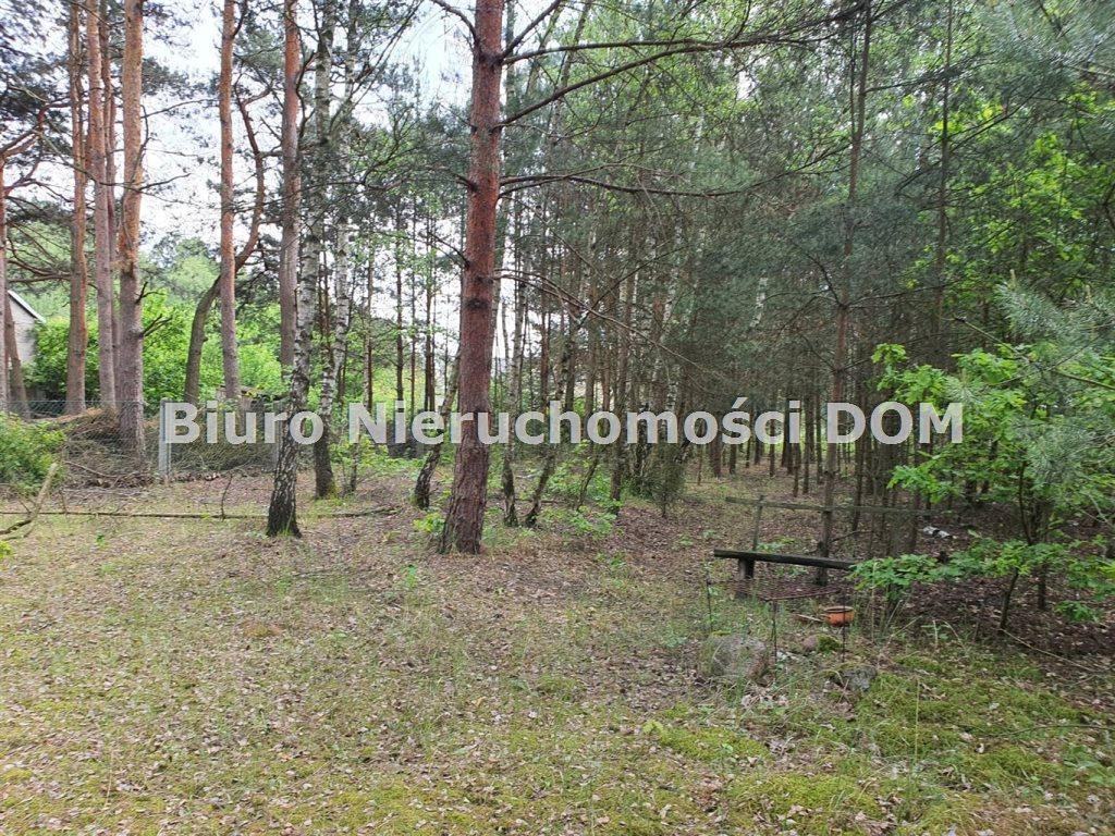 Działka inna na sprzedaż Władysławów  2906m2 Foto 2