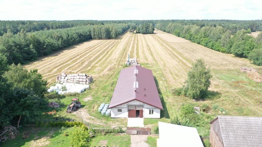 Dom na sprzedaż Nagoszewka Pierwsza  100m2 Foto 8