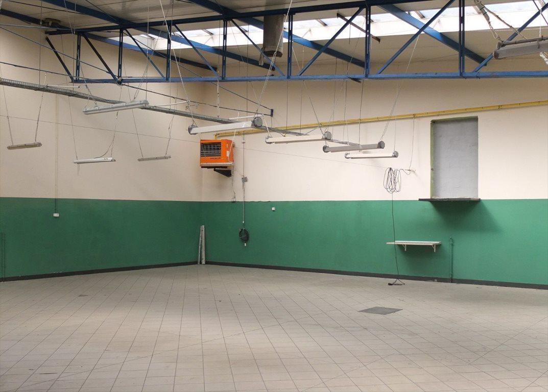 Lokal użytkowy na wynajem Gniezno, konikowo, Al. Reymonta  1471m2 Foto 2
