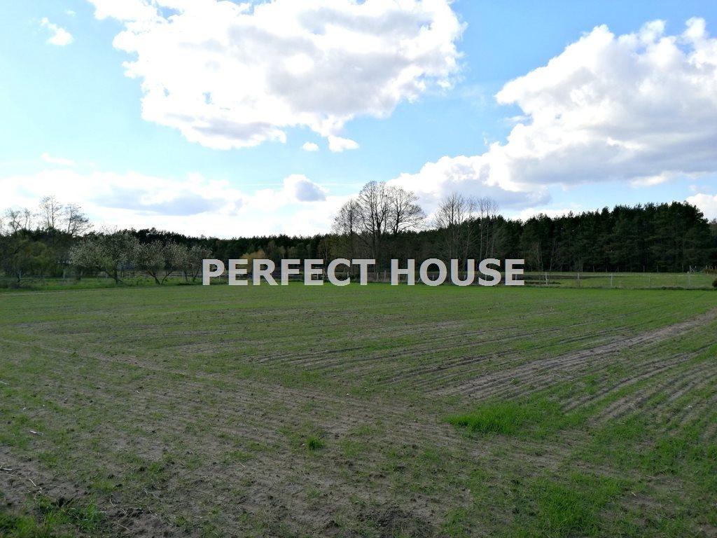 Dom na sprzedaż Drawsko  268m2 Foto 4