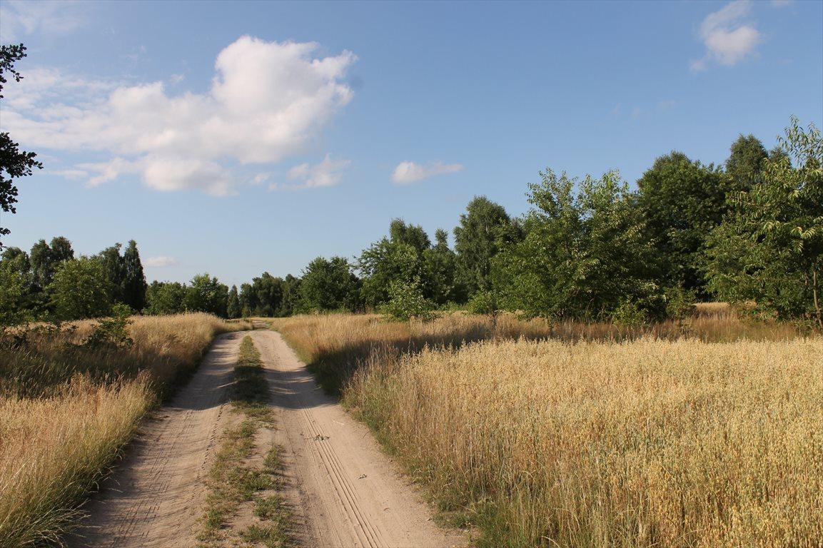 Działka rolna na sprzedaż Łagiewniki Nowe  9500m2 Foto 3