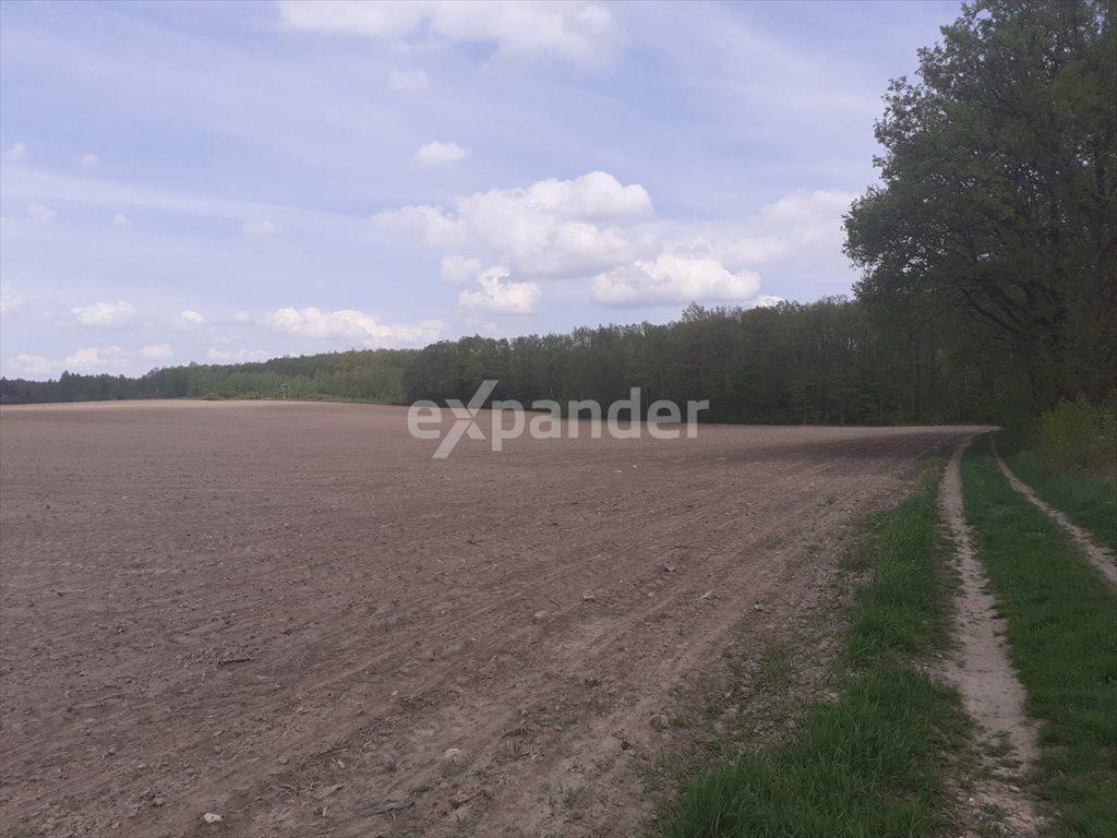 Działka leśna na sprzedaż Jaskrów  2300m2 Foto 2