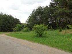 Działka leśna na sprzedaż Skroda Wielka  9200m2 Foto 7