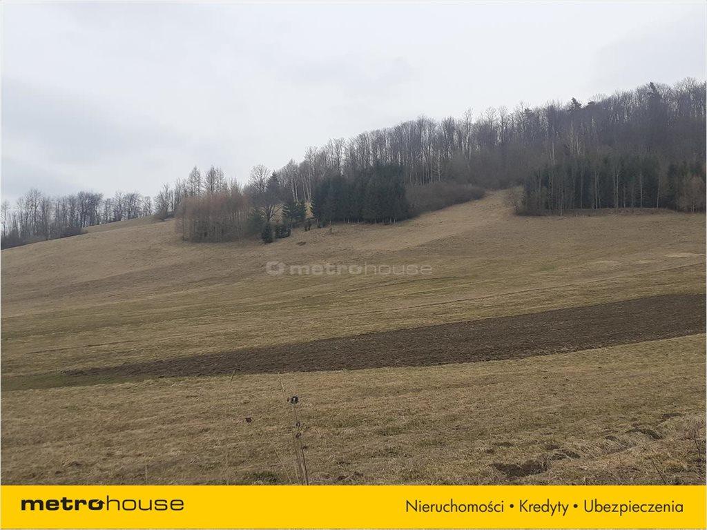 Działka rolna na sprzedaż Terka, Solina  9351m2 Foto 3