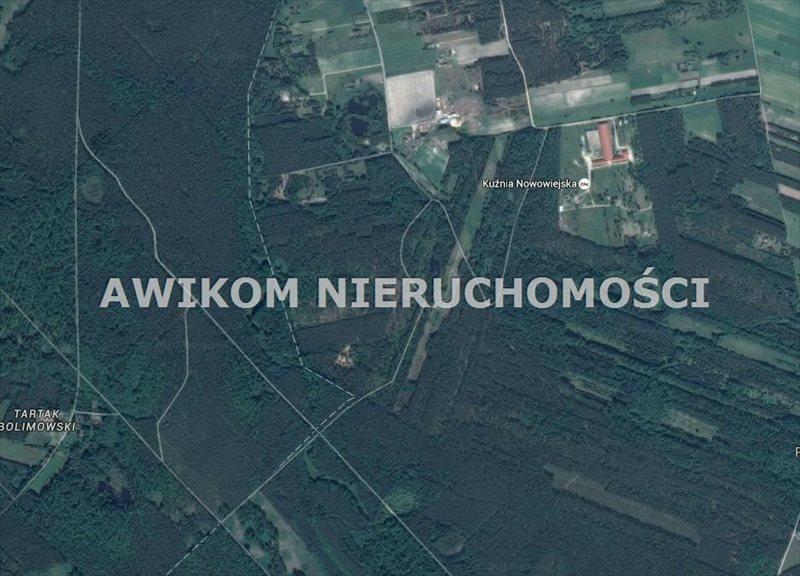 Działka leśna na sprzedaż Wiskitki, Nowa Wieś  40000m2 Foto 1