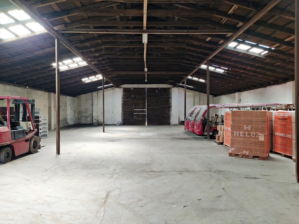 Działka rolna na sprzedaż Rybina, Stegna  4000m2 Foto 7