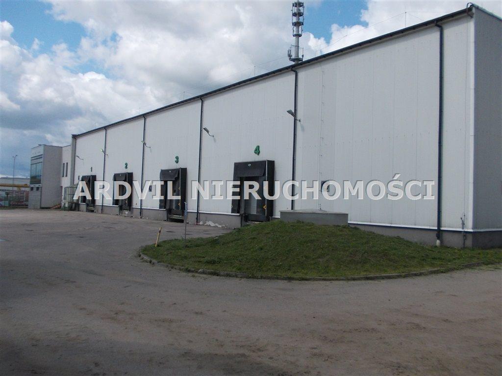 Lokal użytkowy na wynajem Białystok, Bacieczki TBS  1680m2 Foto 3