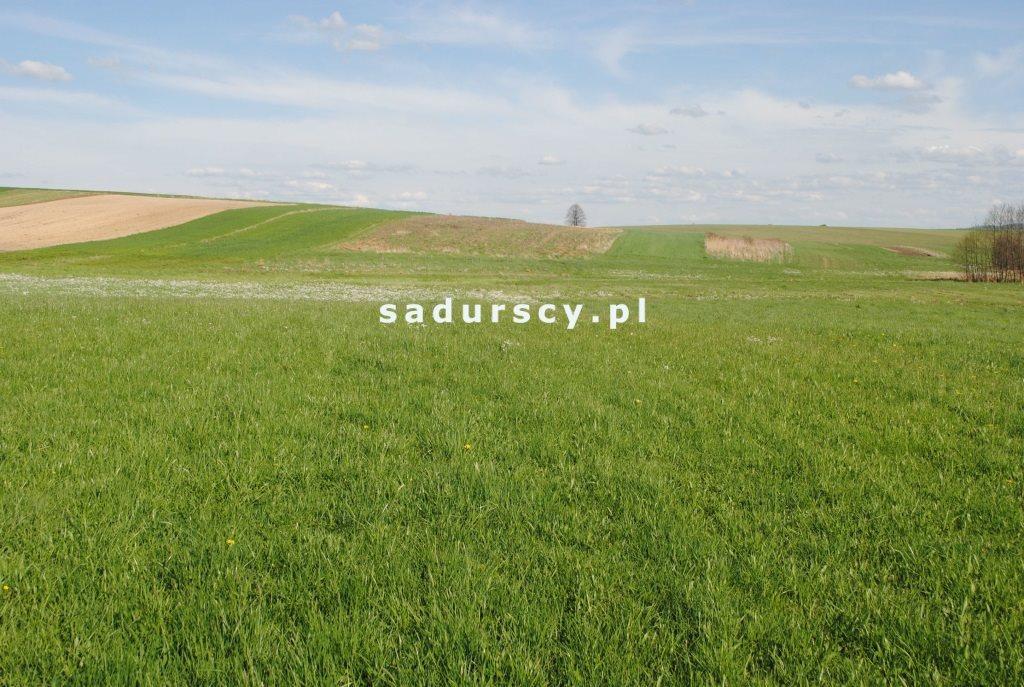 Działka rolna na sprzedaż Ściborzyce  34334m2 Foto 5