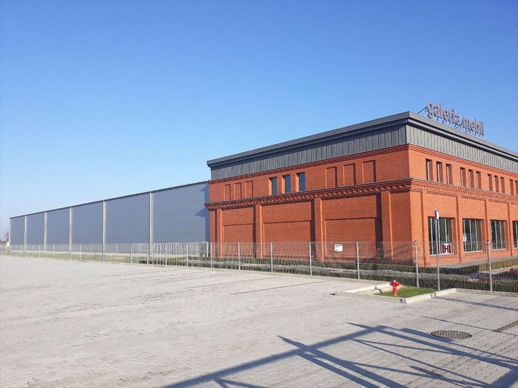 Lokal użytkowy na wynajem Siemianowice Śląskie  2200m2 Foto 1