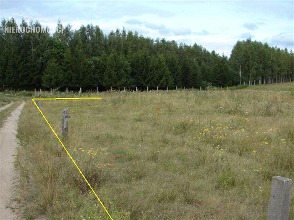 Działka rolna na sprzedaż Lubień, Lubień  46500m2 Foto 5