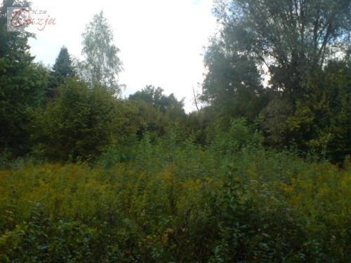 Działka inna pod dzierżawę Grodzisk Mazowiecki  6829m2 Foto 1