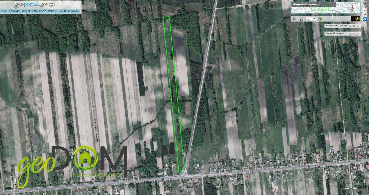 Działka rolna na sprzedaż Terespol  21544m2 Foto 6
