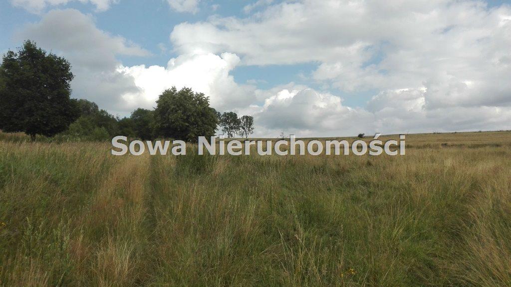 Działka inna na sprzedaż Mieroszów, okolice Mieroszowa  14209m2 Foto 1
