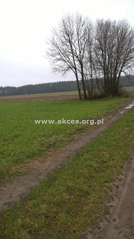 Działka rolna na sprzedaż Gończyce  16800m2 Foto 2