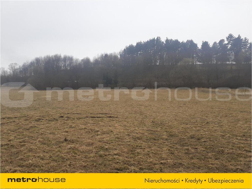 Działka rolna na sprzedaż Rzepedź, Komańcza  5000m2 Foto 4