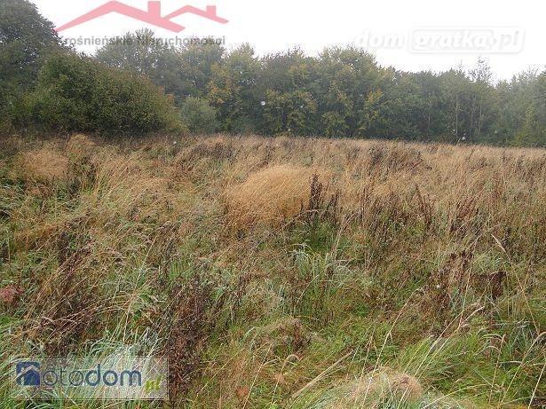Działka rolna na sprzedaż Szufnarowa  22900m2 Foto 2