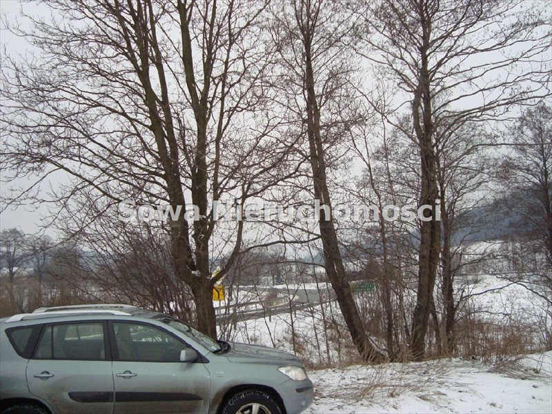 Działka inwestycyjna na sprzedaż Jabłów  14100m2 Foto 4