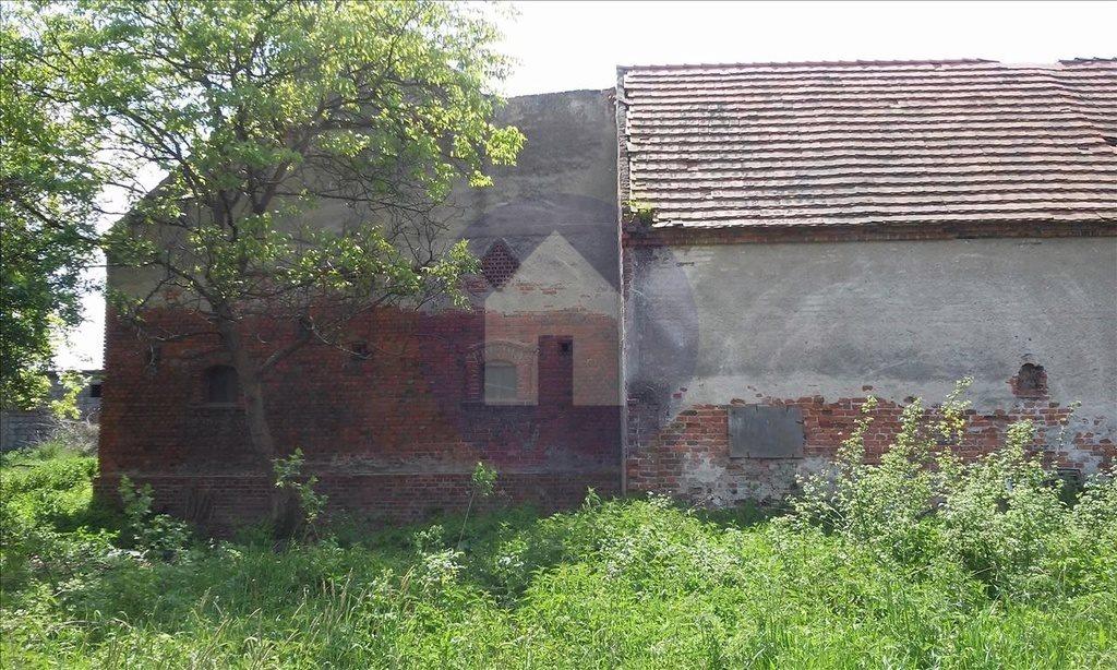 Działka siedliskowa na sprzedaż Szczytniki Nad Kaczawą  7300m2 Foto 6